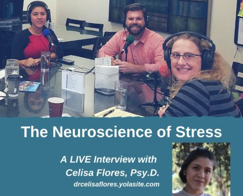 The Neuroscience of Stress