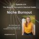 Niche Burnout